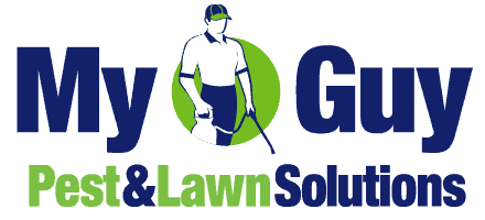 My Guy Pest and Lawn Solutions